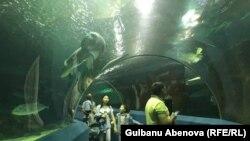 Подводный смотровой тоннель в столичном океанариуме. Астана, июнь 2018 года.
