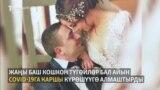 Арменияда бал айында бейтап дарылаган түгөйлөр