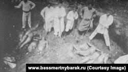 Эксгумация останков жертв Красного террора в Харькове