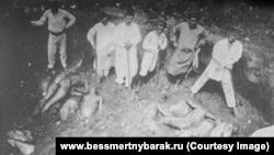 Розкопки братської могили з жертвами Червоного терору в Харкові