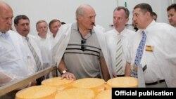 Аляксандар Лукашэнка на Верхнядзьвінскім маслазаводзе, 2011 год