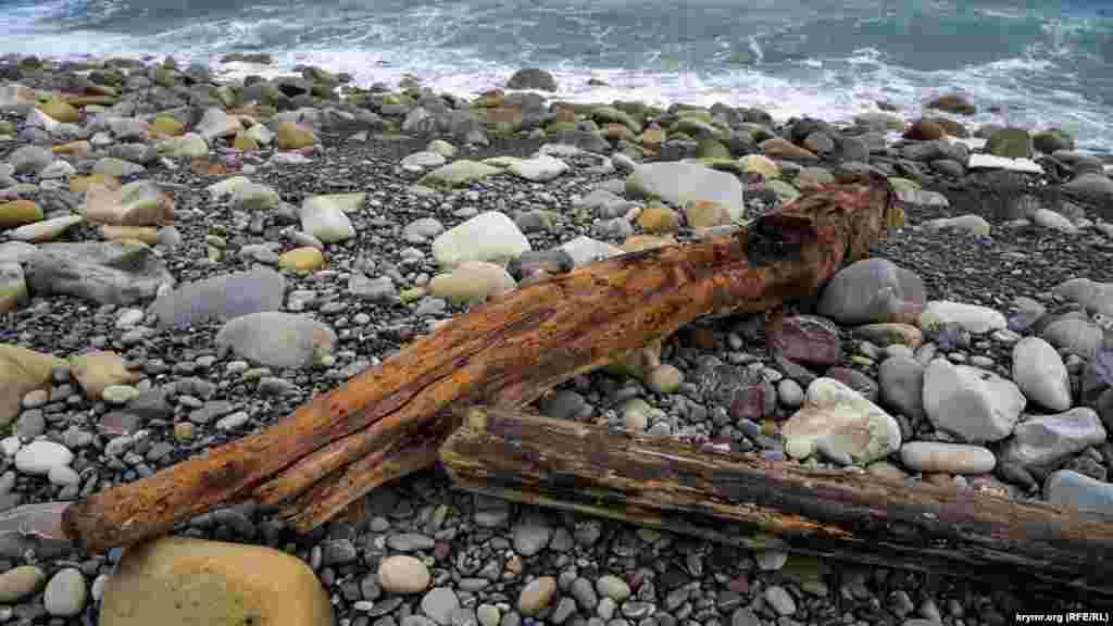 Море встигло добряче відшліфувати викинуті на «нудистський» берег колоди