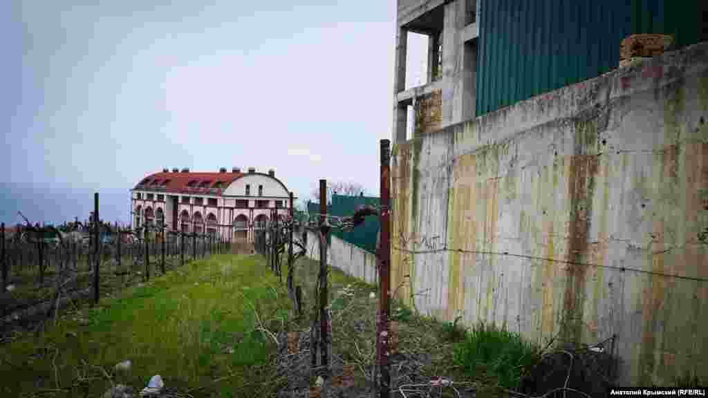 Забор частной застройки вплотную приблизился к виноградникам «Ливадии»
