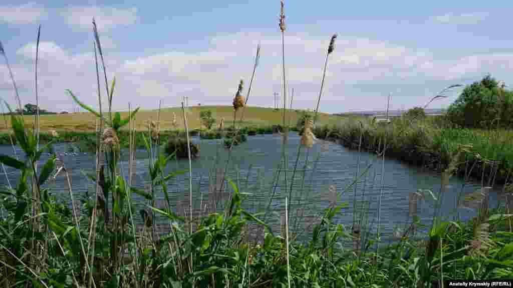 А этот пруд у ТЭС уже выставлен на продажу