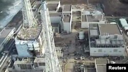 Reactors at the Fukushima plant have been releasing radioactive substances into the air and surrounding Pacific Ocean since cooling systems were knocked out by the March 11 9.0-magnitude earthquake and subsequent tsunami.
