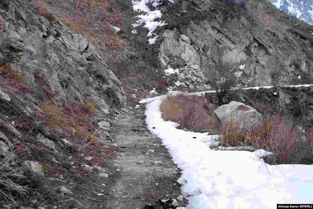 В склон горы Большого Алматинского ущелья «вгрызается» многокилометровая дорога. Местные горные туристы называют ее «японской». Но точно неизвестно, каково было участие пленных в ее строительстве. В любом случае след японских пленных отразился в этом неофициальном топониме. Алматы. 2 марта 2015 года.