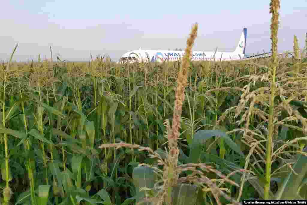 Самалет Airbus A321 Уральскіх авіялініі, які вылятаў з падмаскоўнага аэрапорту Жукоўскі ў Сімфэропаль, зрабіў аварыйную пасадку на кукурузным полі. На борце знаходзіліся 224 пасажыры і сем членаў экіпажа. Все жывыя.