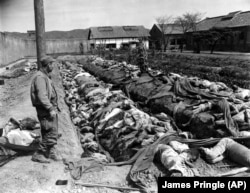 The bodies of some 400 Korean civilians murdered by the communists as they retreated from Taejon in September 1950. Witnesses said the victims were forced to dig their own trench graves before the killings.