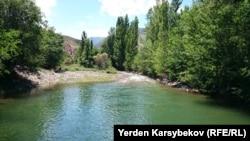 Трансшекаралық Аспара өзені. Чолок-Арык ауылы, Қырғызстан, 23 маусым 2014 жыл.