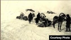 Спецпоселенцы Усть-Енисейского района