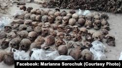 У Луцьку знайдені останки розстріляних в'язнів радянського режиму. Літо 2017 року