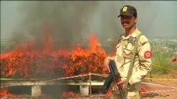 В Пакистане уничтожили сотни тонн наркотиков