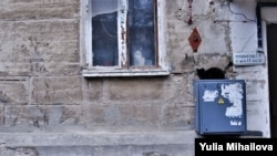 """""""Locatari"""" ai unui bloc vechi, în sectorul Rîșcani, Chișinău, 2020"""