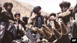 آرشیف، جنگجویان طالبان