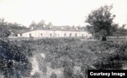 Польские военнопленные во временном лагере. Тереспольское укрепление Брестской крепости, сентябрь 1939 г.