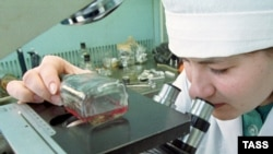 A researcher examines a sample at Russia's State Research Center of Virology and Biotechnology (Vector) in Koltsovo, near Novosibirsk. (file photo)