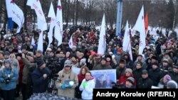 Митинг протеста в Ярославле 7 декабря 2014 г.