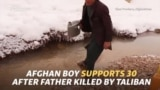 Afghan Boy Supports 30 After Father Killed By Taliban