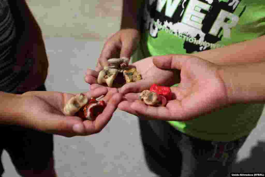 Асыки (альчики) в руках у сельских ребят.