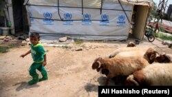 Сирійський хлопчик у таборі для біженців у ліванському місті Заграні, червень 2018 року. За даними ООН, кожен шостий сучасний біженець знайшов притулок у Лівані