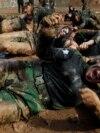 Members of Kurdish Peshmerga special forces demonstrate their skills during their graduation ceremony at a military camp in Iraqi Kurdistan. (Reuters/Azad Lashkari)