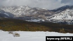 Перший сніг на зеленому листі: на Ангарському перевалі почалася зима