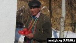 Моңолбек Султанбаев, Нарында помидор өстүргөн дыйкан. 20-февраль, 2013-жыл