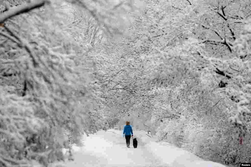 A woman walks a dog on a snow-covered path beside the Rideau Canal in Ottawa, Ontario, Canada. (Reuters/Chris Wattie)