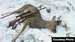 Охотники обвиняют чиновников в браконьерстве