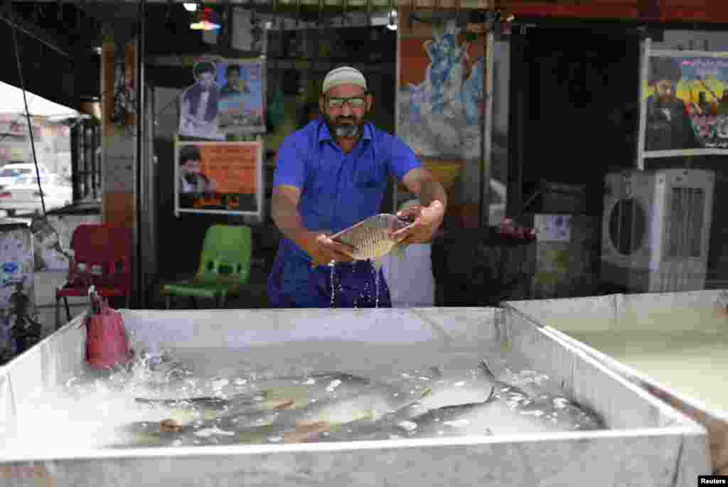 A fishmonger sells carp, popular as a grilled dish in Baghdad.
