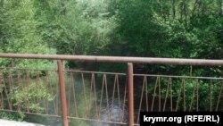 Так виглядає річка Чорна з мосту в селі Чорноріччя, червень 2020 року