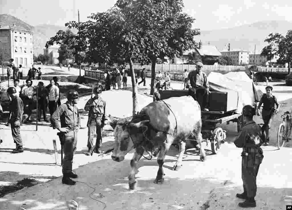 1947 год. Итальянец и его вол изгоняются из территории, которая должна быть передана Югославии. По мирному договору с Италией несколько островов и регионов были переданы Югославии после поражения держав оси во Второй мировой войне.