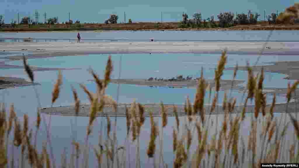 Колишній піщаний кар'єр біля городища перетворився на цілюще озеро
