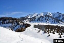 Вид на восточную часть плато Кок-Жайляу с Сухого хребта. По первоначальному проекту, рукотворный еловый лес на переднем плане справа должен был пойти под топор ради строительства здесь альпийской деревни. 9 февраля 2017 года.