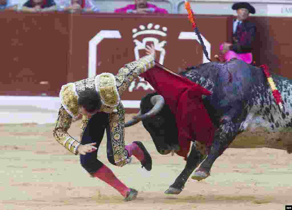 "Jose Miguel Perez, who fights under the nom-de-gore :-) of ""Joselillo,"" is turned over by the bull as he enters to kill during his bullfight at the Virgen Blanca Vitoria Fair in Vitoria, Spain. (EPA/Adrian Ruiz de Hierro)"