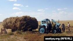 Шөп шауып жүрген фермерлер. Ақтөбе облысы, 8 қыркүйек 2012 жыл. (Көрнекі сурет)