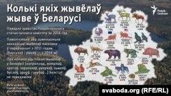 Колькасьць некаторых відаў жывёлаў уБеларусі паводле Нацыяналньага статыстычнага камітэту