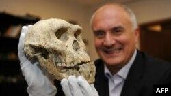 """Давид Лордкипанидзе, директор Национального музея Грузии, с черепом """"Человека прямоходящего"""""""