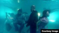 В подводном царстве