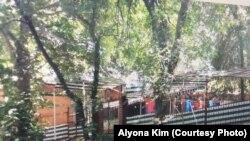 """Alyona Kim Xo'jandda """"Ochil"""" restoranida ishlagani aytiladi"""