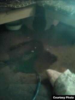 Вода в доме, на кухне. Село Осакаровка, Карагандинская область. Фото прислала жительница села.