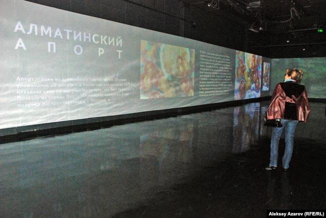 Алматы апорты мен алмалары жайында өткен «Алматы деген біз » көрмесіне келген көрермен. Алматы, 30 қыркүйек 2015 жыл.