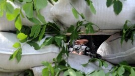 Донецкіден 25 шақырым жердегі Маринка елдімекенінде бақылау бекетіндөгі ресейшіл сепаратист. 15 шілде 2014 жыл.