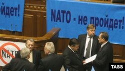 Депутаты от оппозиции требуют объявить референдум по НАТО еще до рассмотрения Альянсом вопроса о возможности присоединения Украины