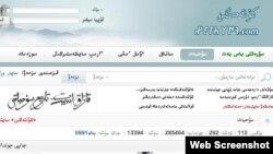 Қытай қазақтарының kultegin.com сайтынан скриншот. (Көрнекі сурет)