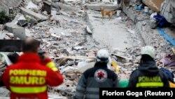 Собака-спасатель в поисках жертв землетрясения, Албания, 28 ноября 2019 года