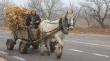 Pe drum spre Cimișlia...