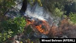 Požar u Čapljini, Bosna i Hercegovina
