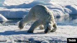 Arktički led na vrhuncu zime ima najmanju površinu, i to treću godinu zaredom