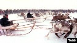 Гонки на оленьих упряжках. Нарьян-Мар. Ненецкий автономный округ.